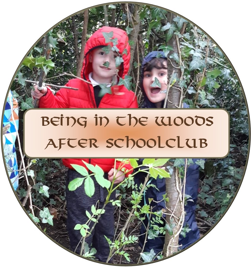 being in the wood buttons